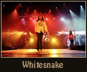 whitesnake-top.jpg